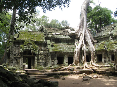 temple-de-ta-prohm